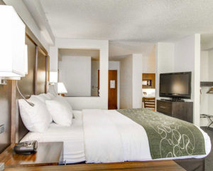 accessible one king bed suite